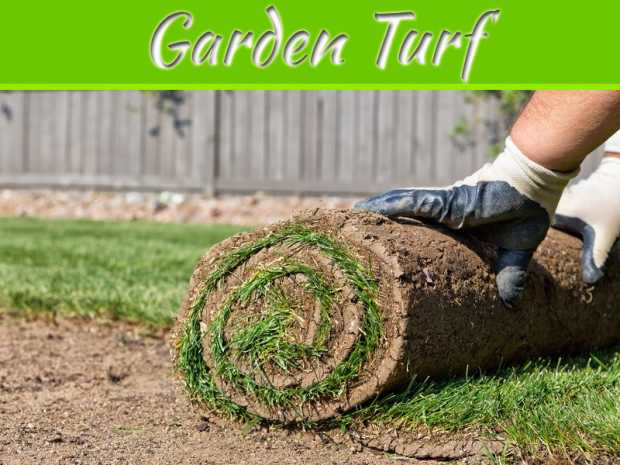 Top 5 Tips for Buying Garden Turf