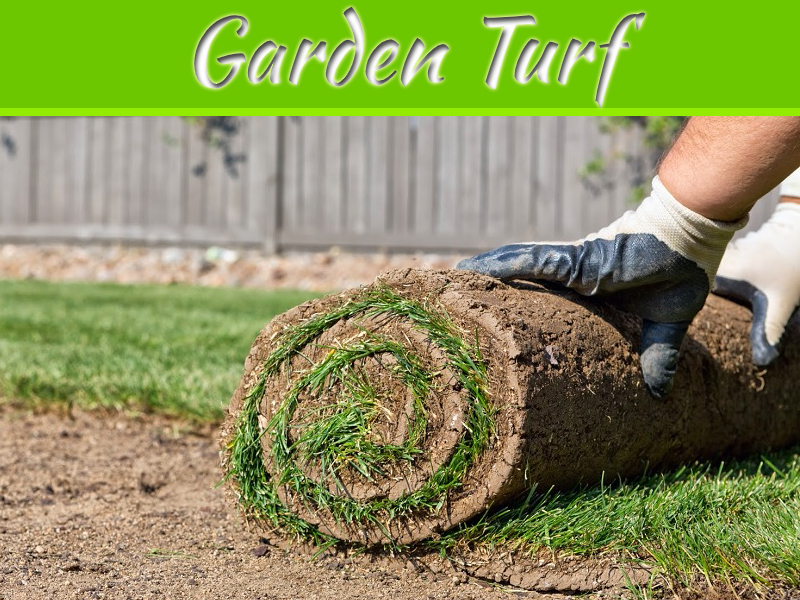 Top 5 Tips for Buying Garden Turf