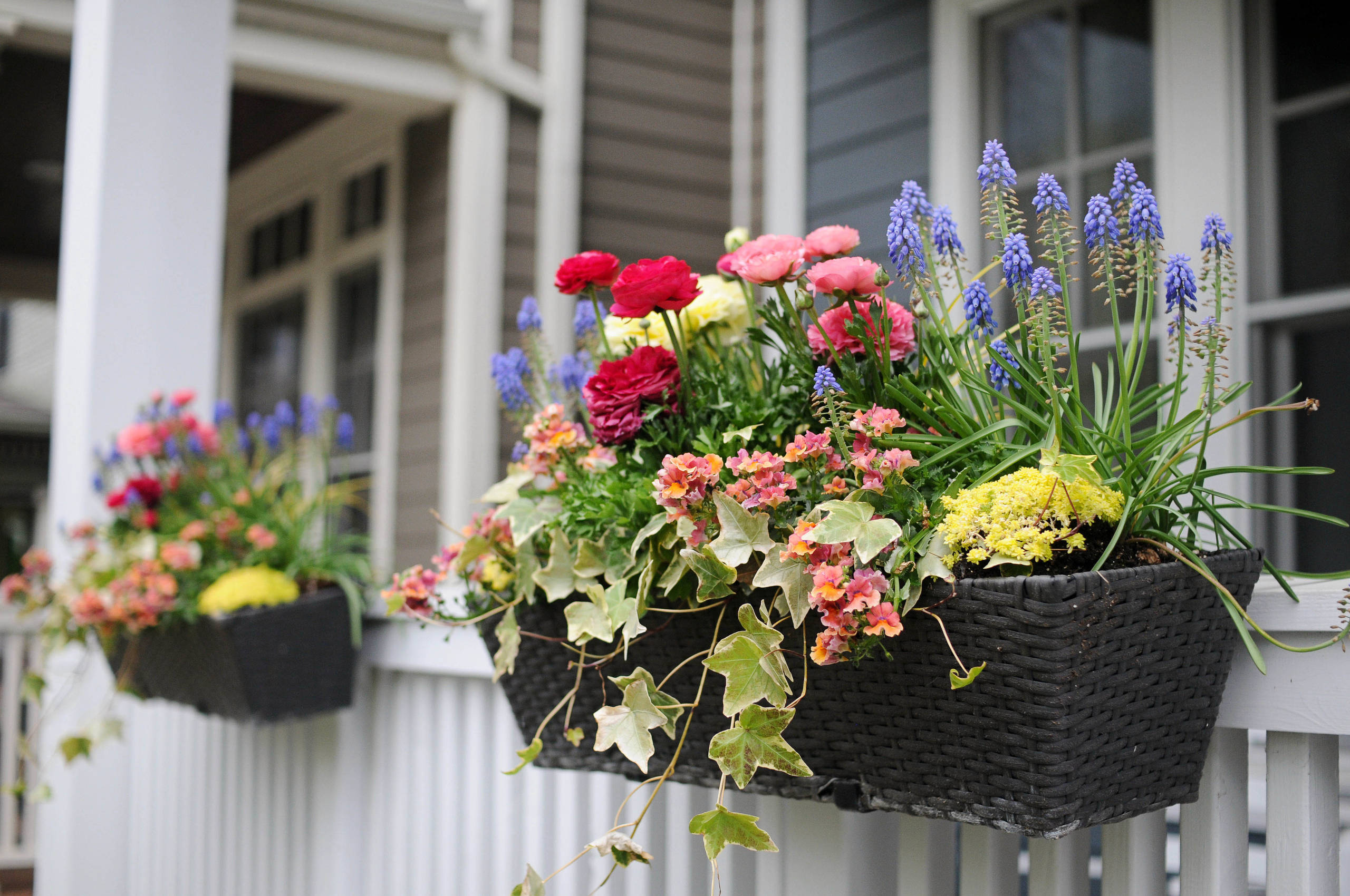 Multi Colored Flower Planter