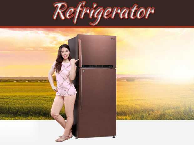 Easy Ways To Save Money On Refrigerator Maintenance