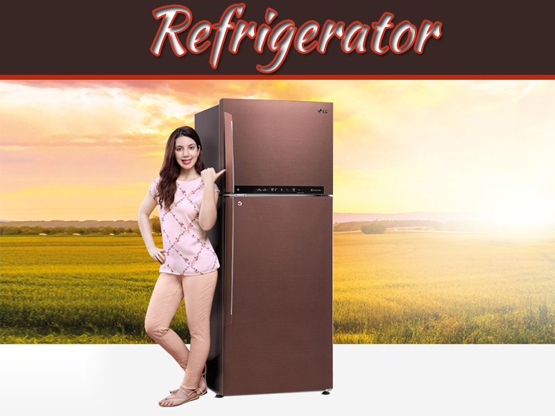 Easy Ways To Save Money On Refrigerator Maintenance