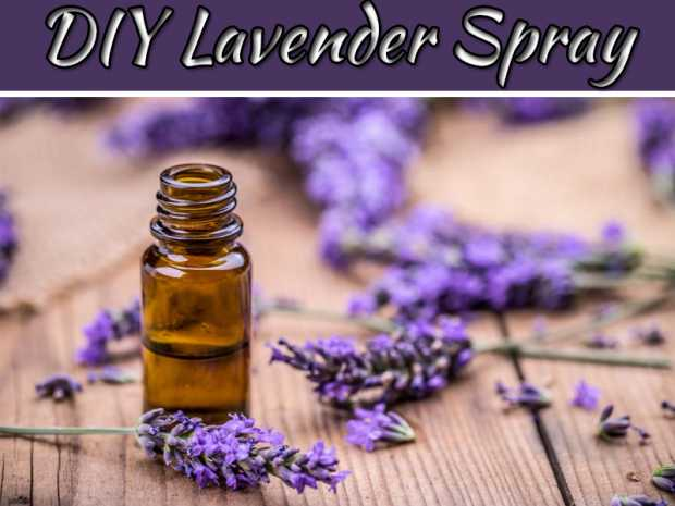 How To Make A DIY Lavender Sleep Spray