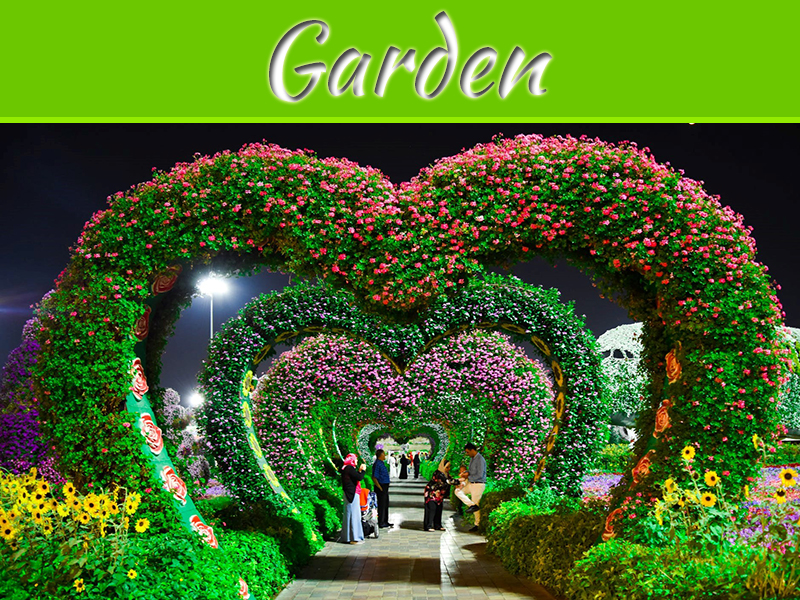 Ideas To Decorate Your Garden