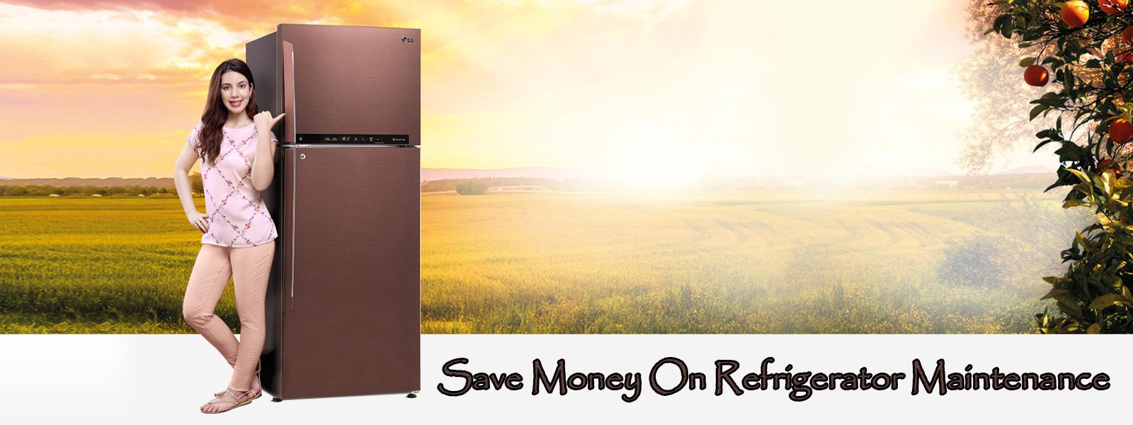 Save Money On Refrigerator Maintenance