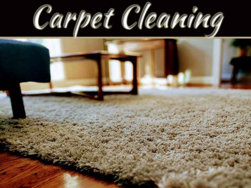 The Best Carpet Steam Cleaning Keeps Your Carpets Clean And Fresh