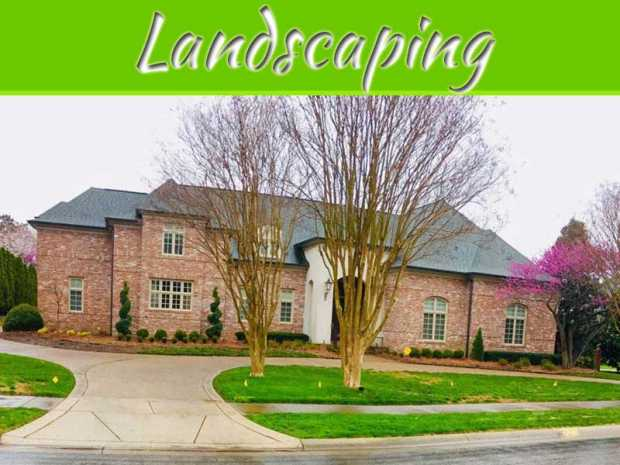 Landscaping Like A Pro
