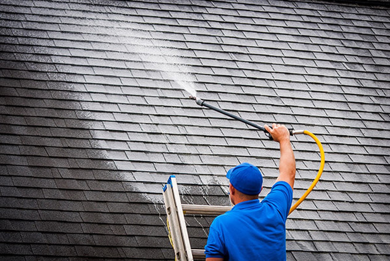 Why Roof Cleaning And Moss Removal Services Are Important My Decorative