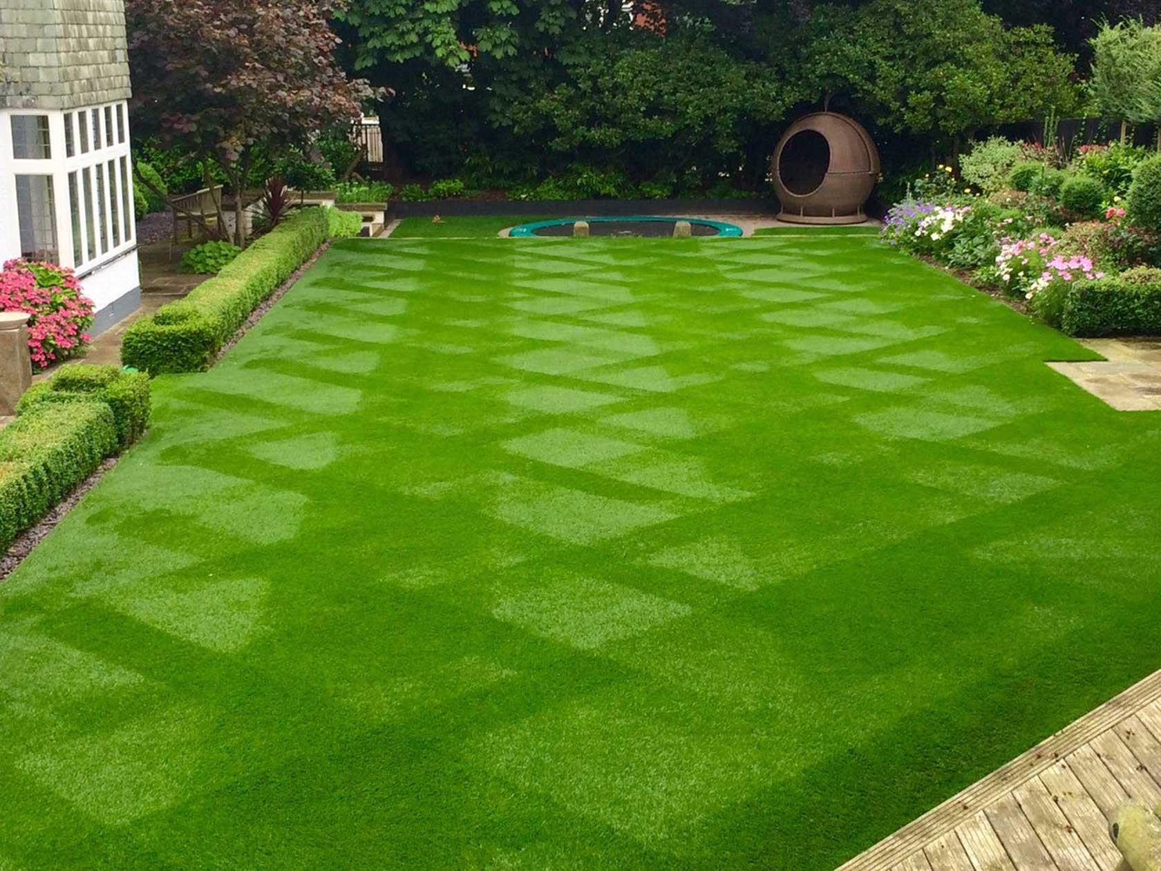 Having The Best Lawn