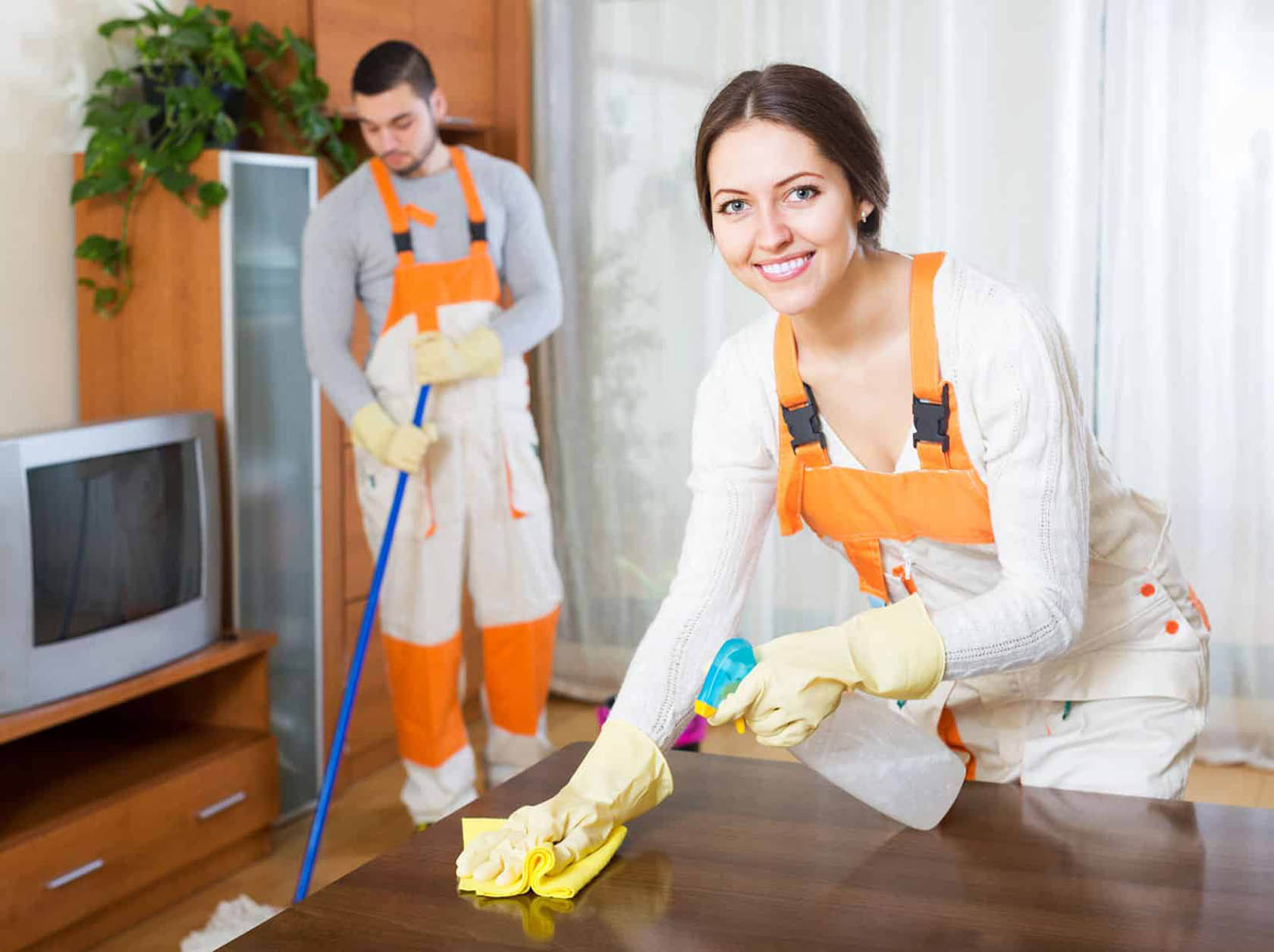 Professionally Cleaning Service
