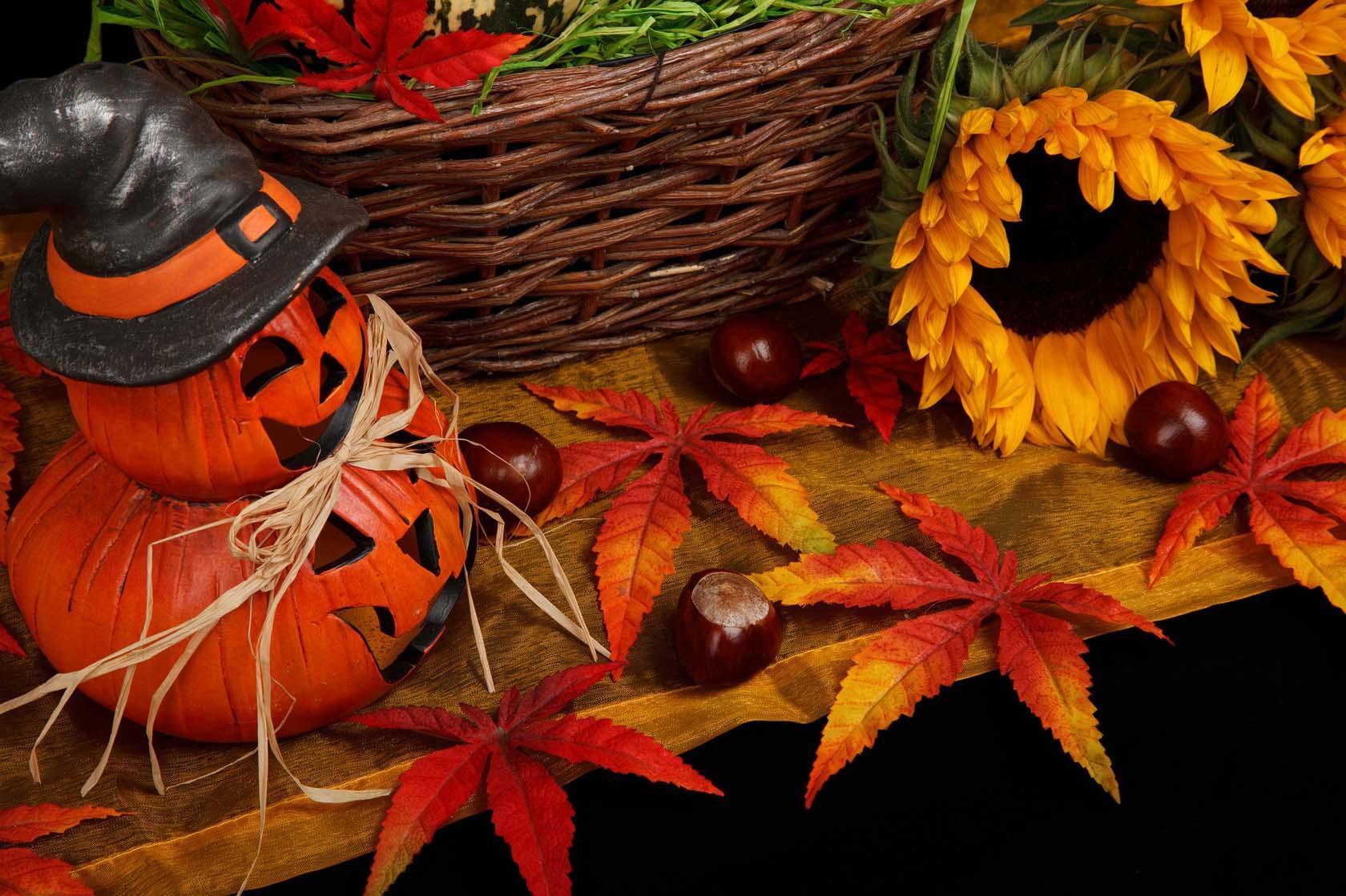 Autumnal Theme
