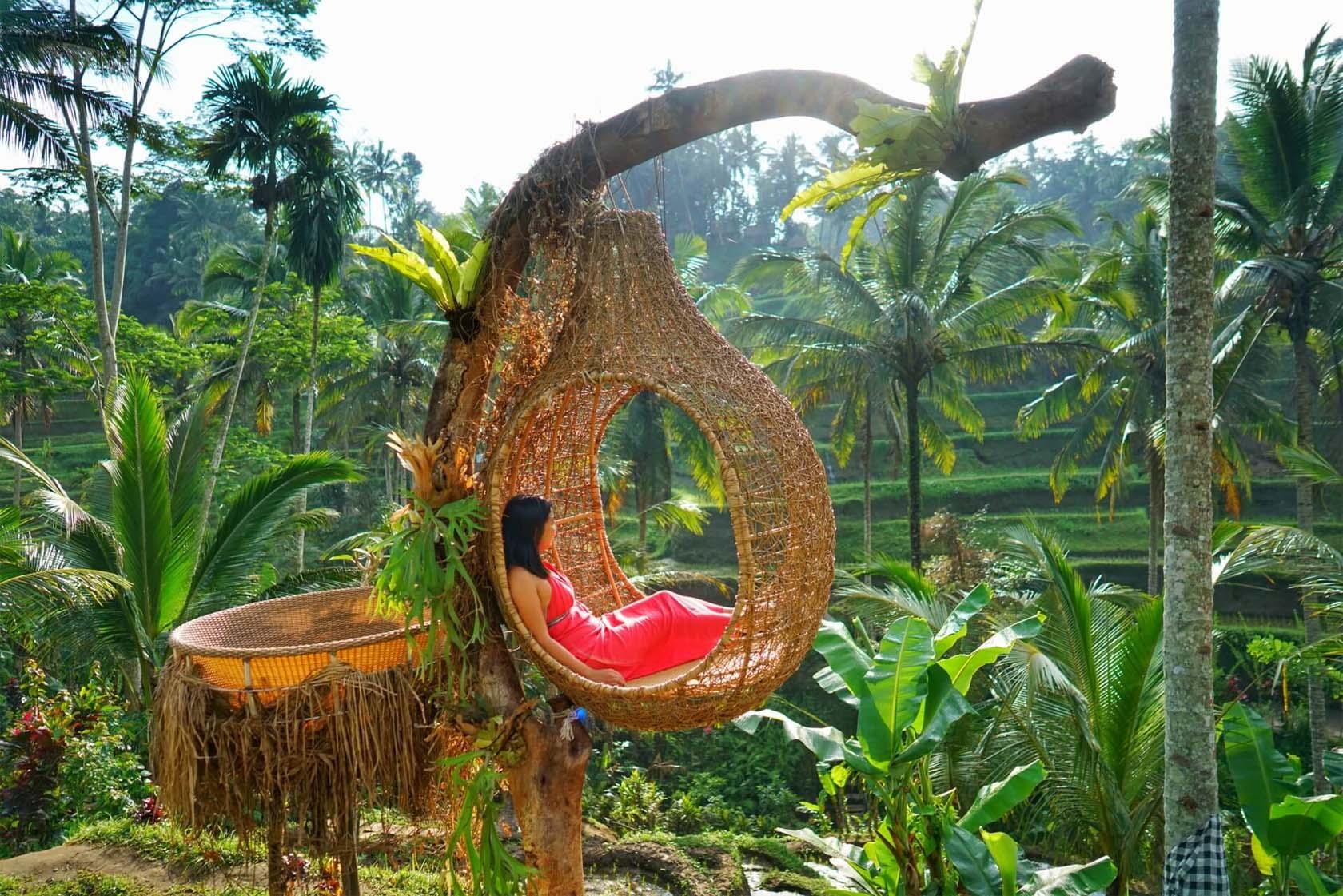 Bird's Nest Treehouse