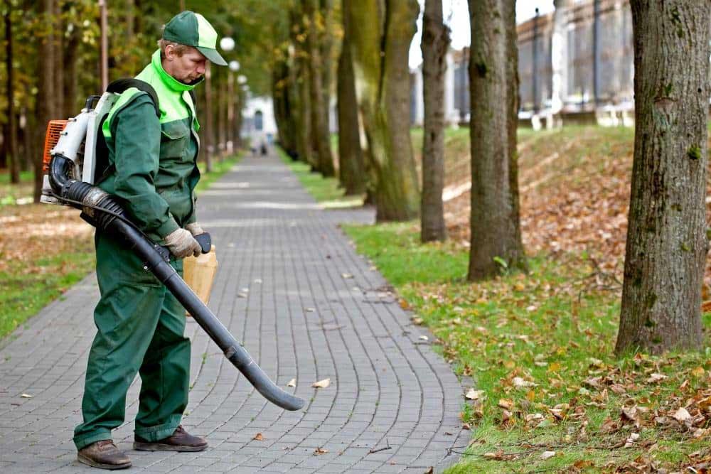 Leaf Blower Expert