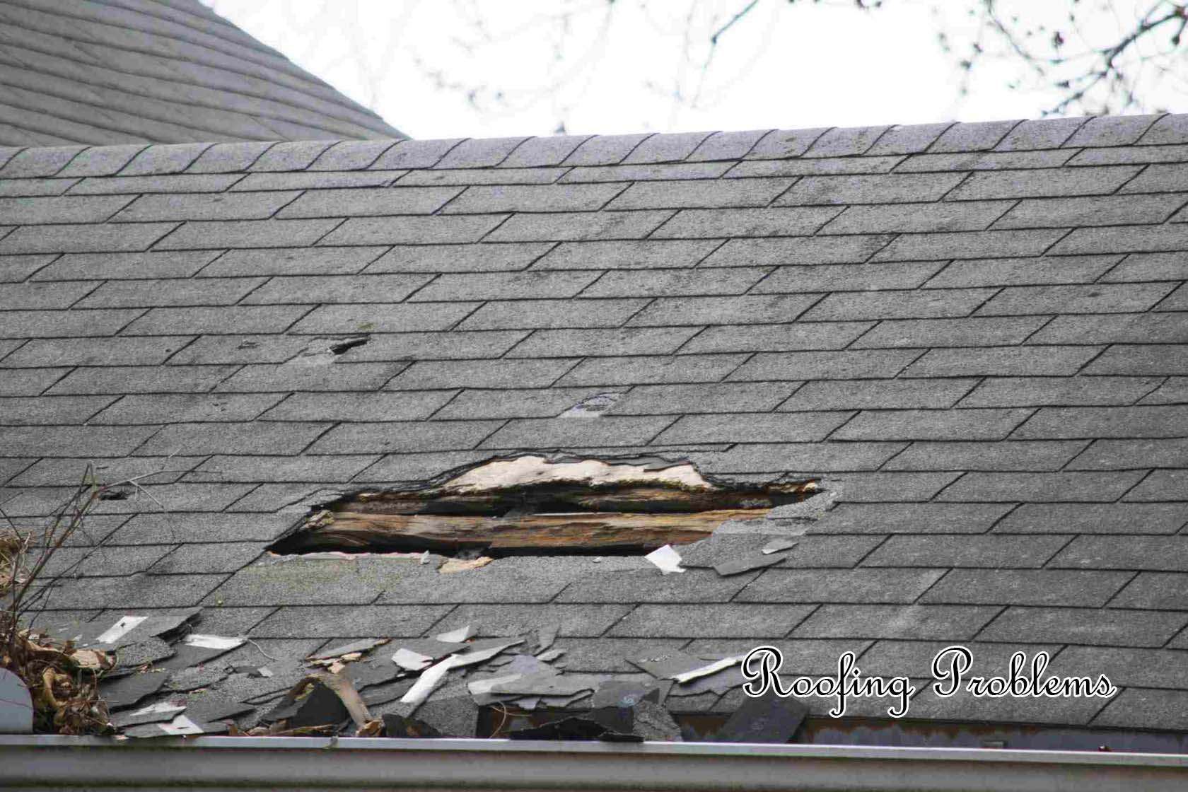 Roofing Problems