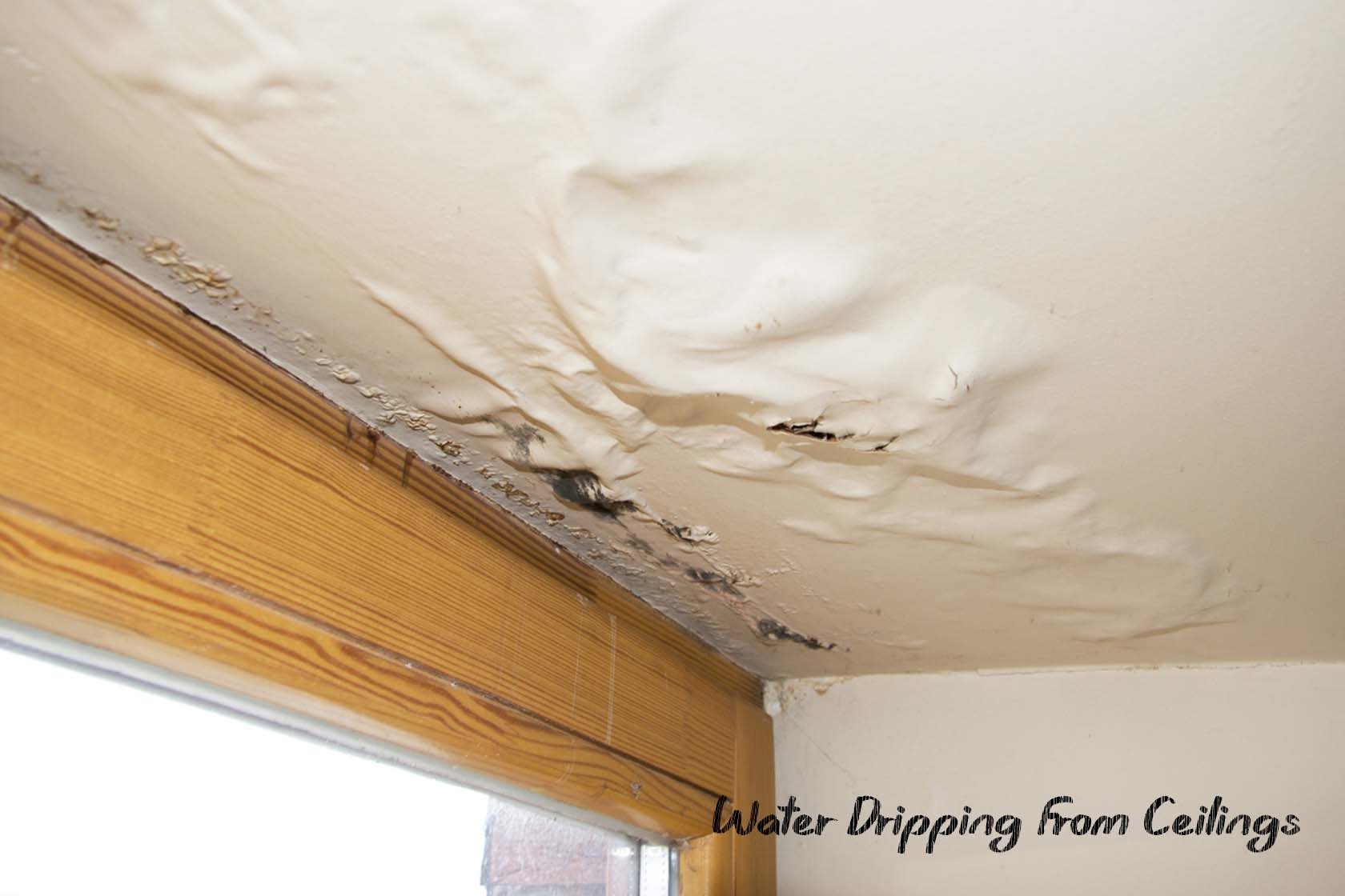 Water Dripping From Your Ceilings