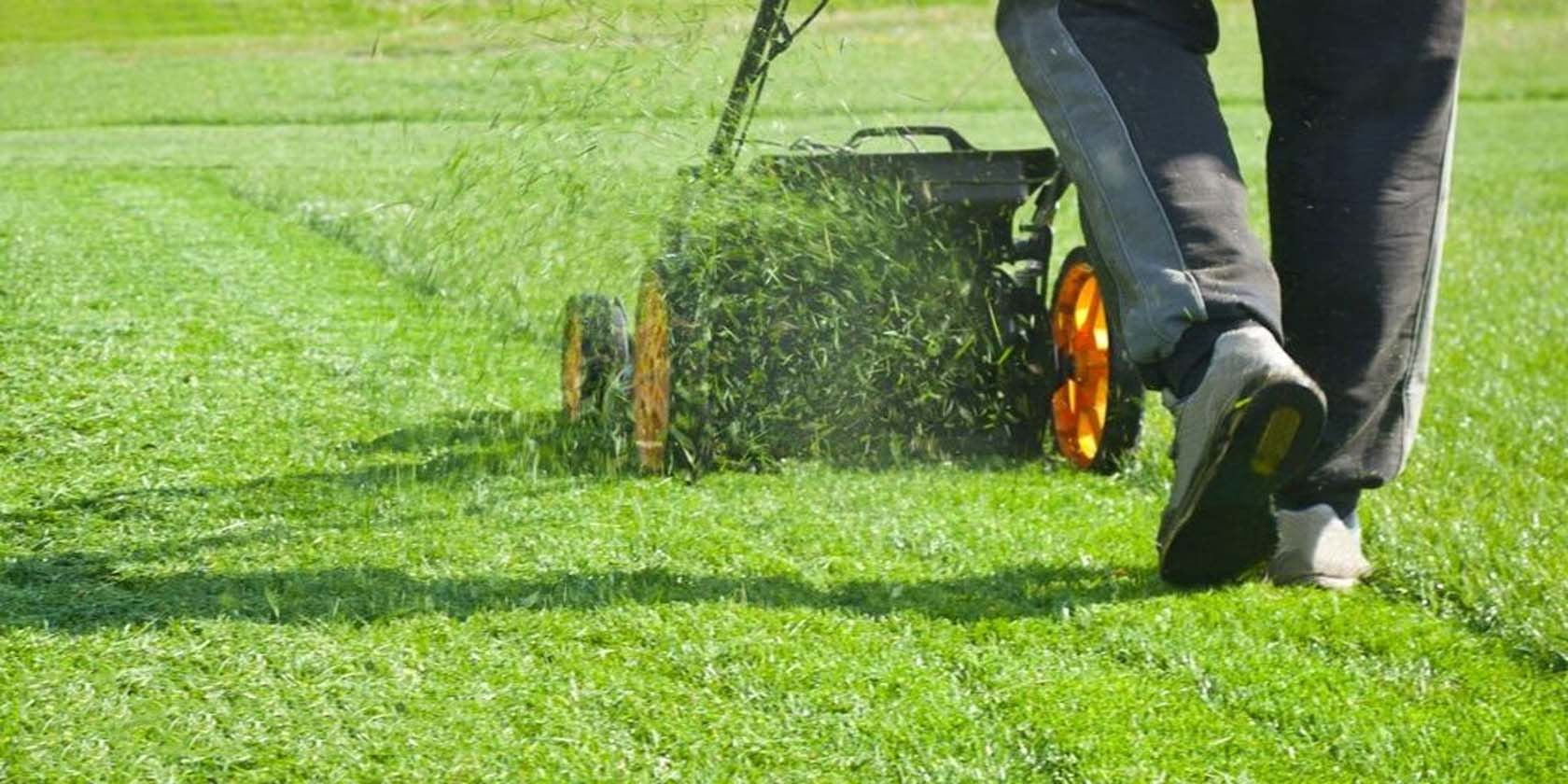 Commercial Grounds Management