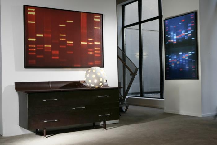 DNA Portrait Living Room Wall