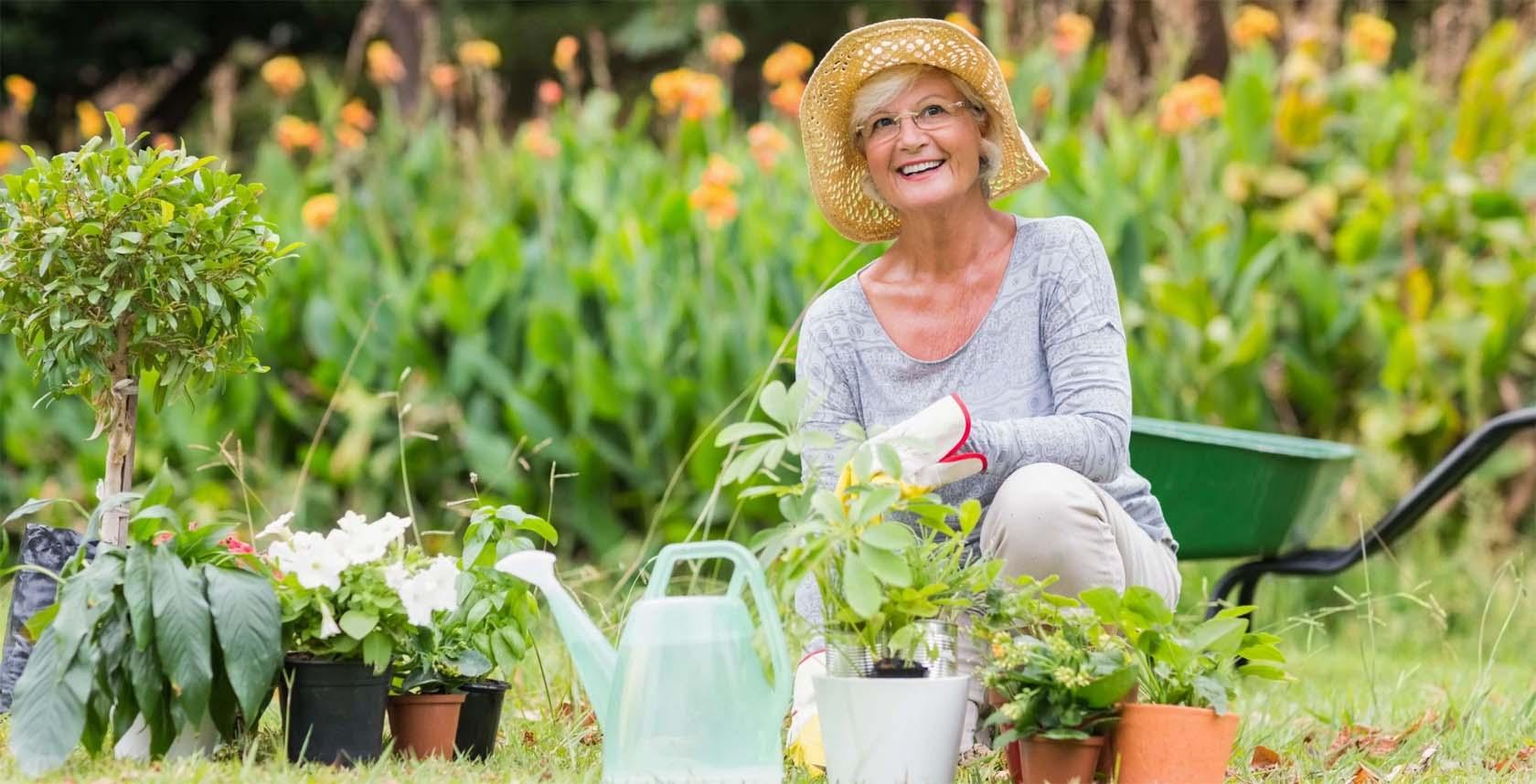 Elderly Gardening Tips