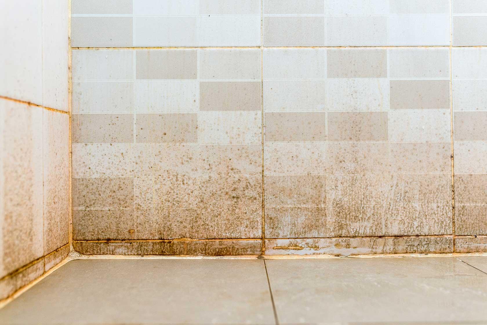 Bathroom Walls